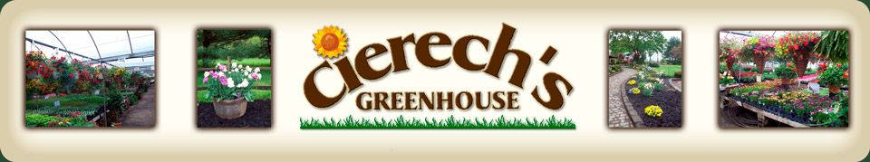 Cierech Greenhouse