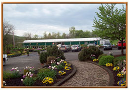 Cierech's Greenhouse - Pohatcong, NJ-Cierech's Pohatcong Growers' website